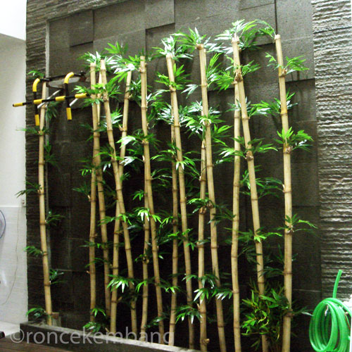 Bamboo Green Wall - BA05