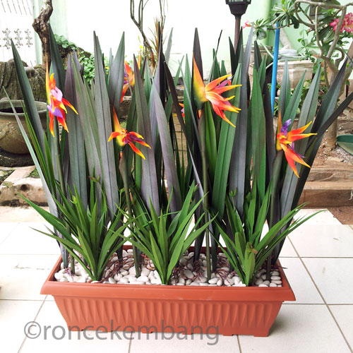 Planter Partition, Heliconia - AP01