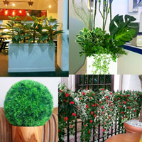 Artificial Plant Category